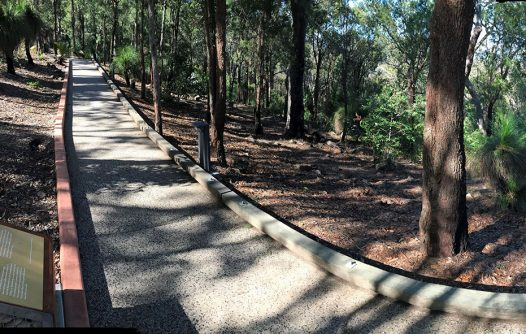 Bush Rehabilitation Project: Fraser Park, Mount Archer | Capricornia Catchments
