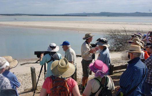 Sandy Point Discovery Day   Advocacy & Community Projects   Capricornia Catchments