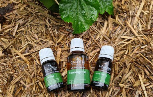 Aromatherapy   Advocacy & Community Projects   Capricornia Catchments
